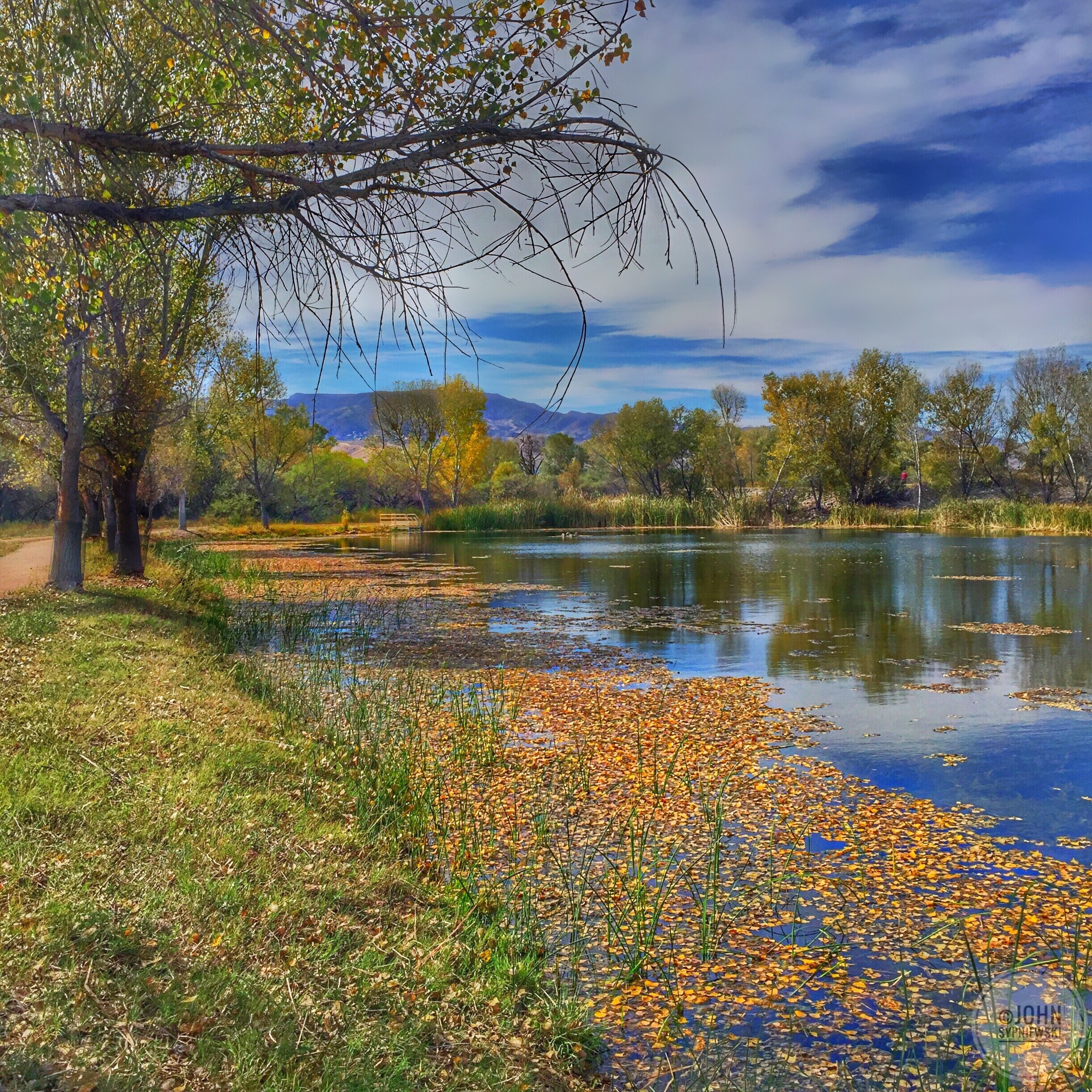 Dead Horse Ranch State Park, Cottonwood, Arizona, United States of America