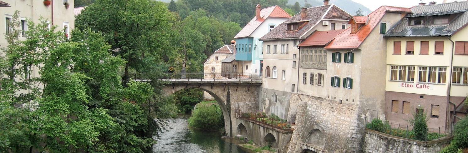 Радовлица, Словения