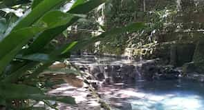 Ardent Hot Spring