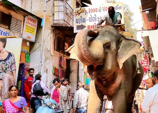 Ahmedabad, Indie