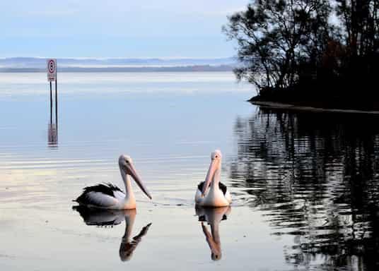 北方入口, 新南威尔士州, 澳大利亚