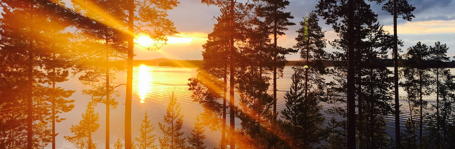 Vītasāri, Somija
