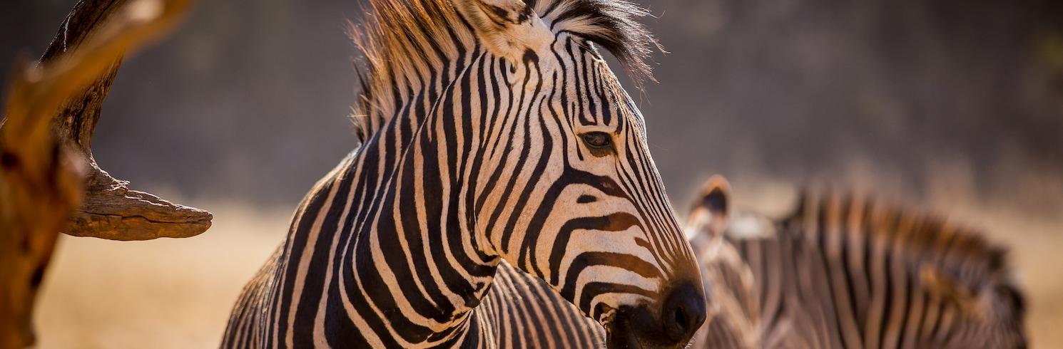 West Rand, Güney Afrika