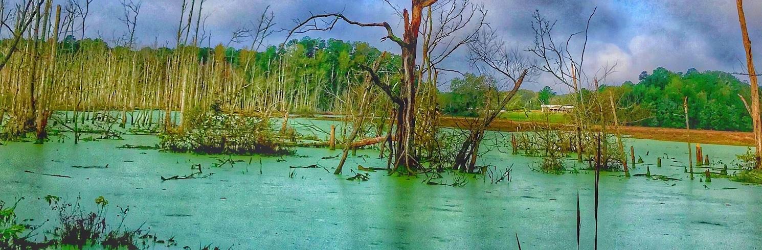 Anson County, Carolina Utara, Amerika Serikat