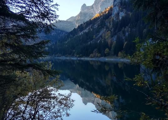Tanay, İsviçre