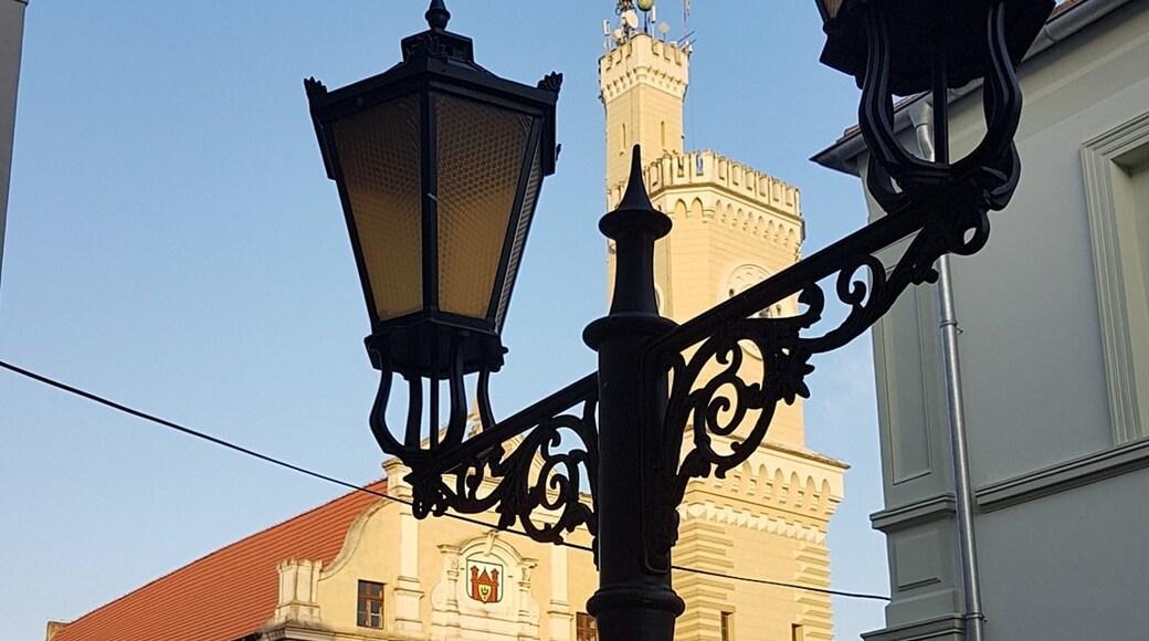 Photo by Sylwia Olejnik-Antkowiak