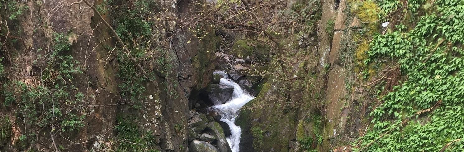 Tillicoultry, Yhdistynyt kuningaskunta
