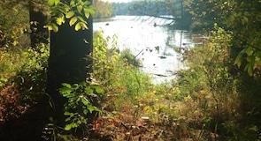 Парк штата «Озеро Виссота»