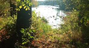 Taman Negeri Tasik Wissota