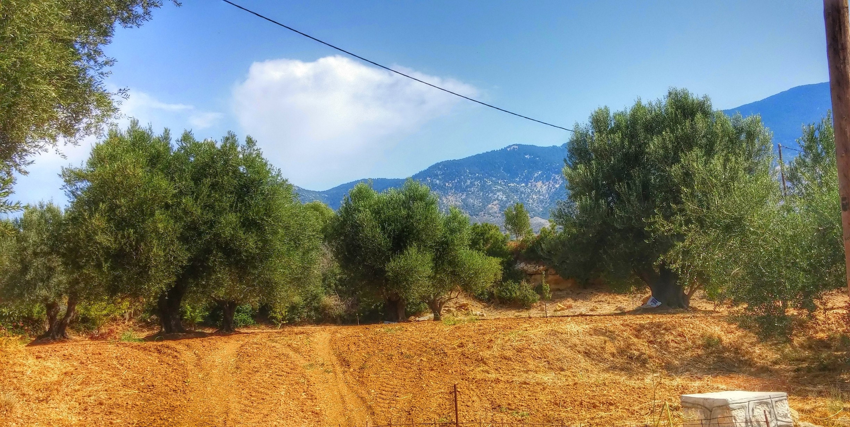 Karavados, Kefalonia, Ionian Islands Region, Greece