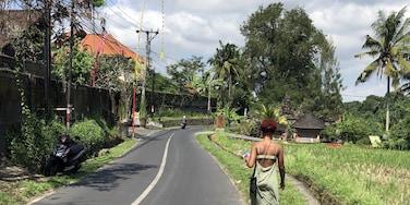 Kutuh Kaja, Ubud, Bali, Indonésie