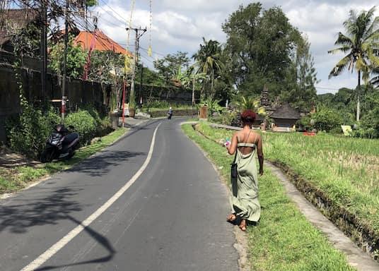 Petulu, Indonesia