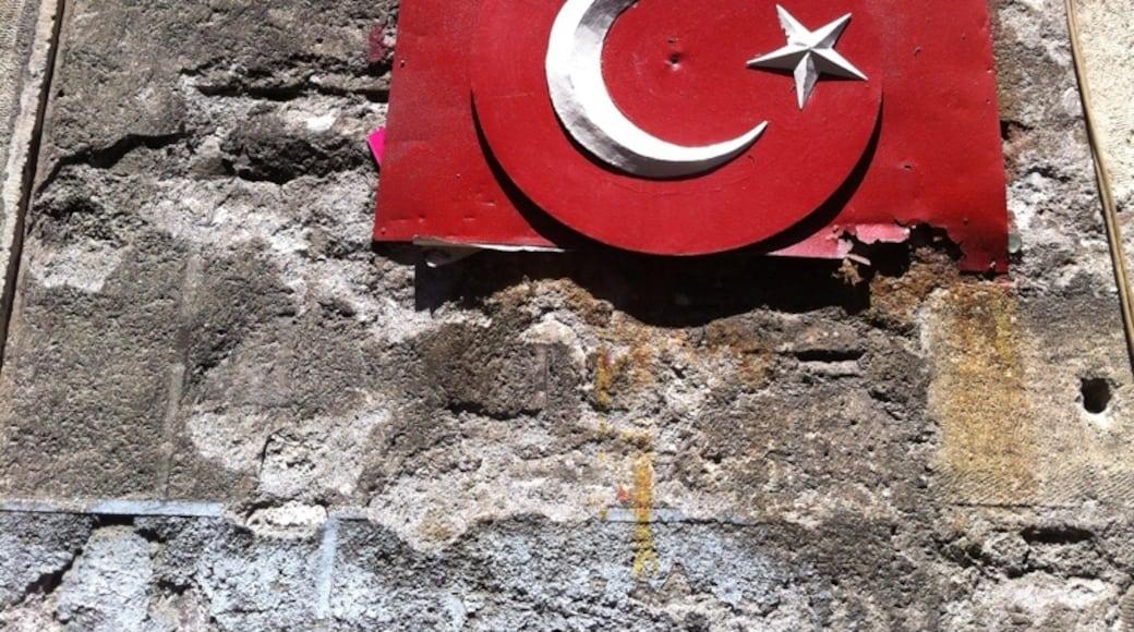 Photo by Erdem Yücel