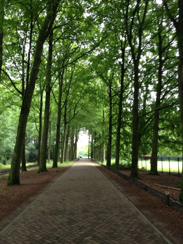 Municipality of Almelo, Overijssel, Netherlands
