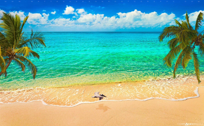 Taylor Bay Beach, Providenciales, Turks and Caicos