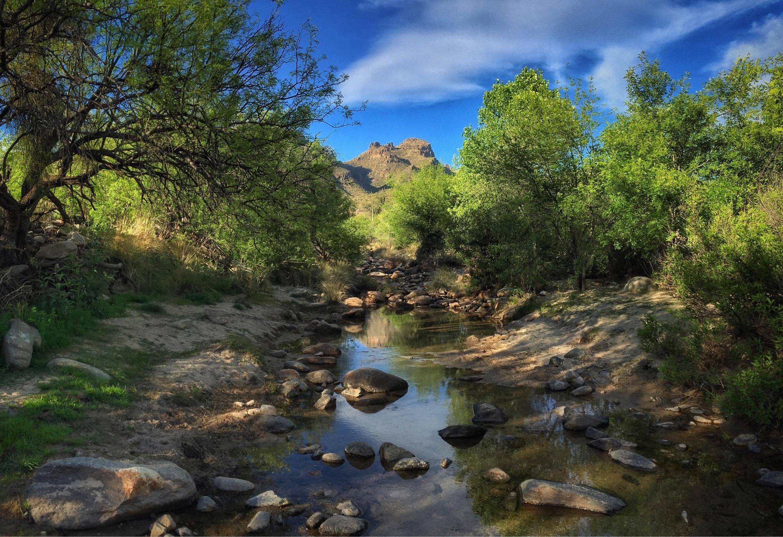 Tanque Verde, Arizona, United States of America