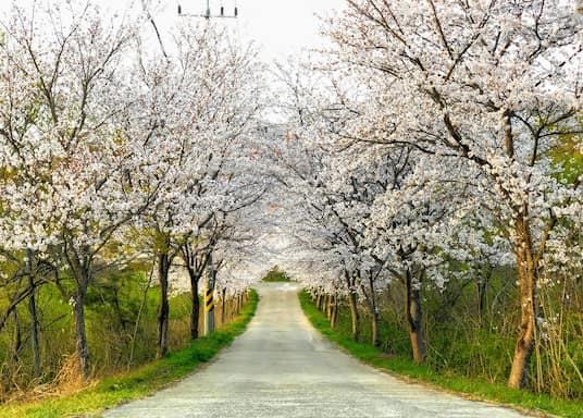 Jinju, South Korea