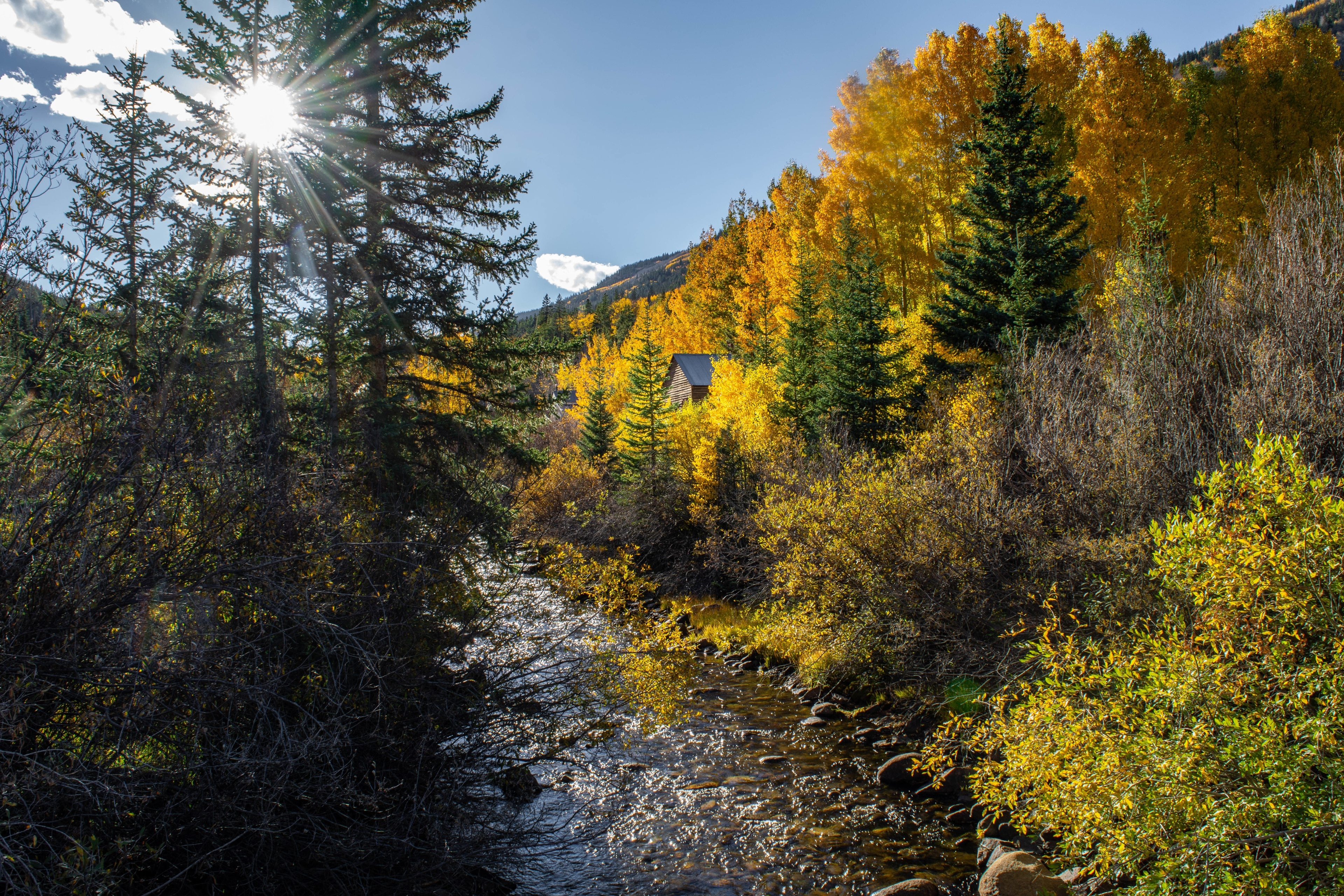 San Isabel National Forest, Colorado, United States of America