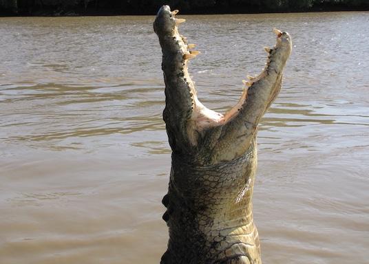 South Alligator River, Northern Territory, Australia