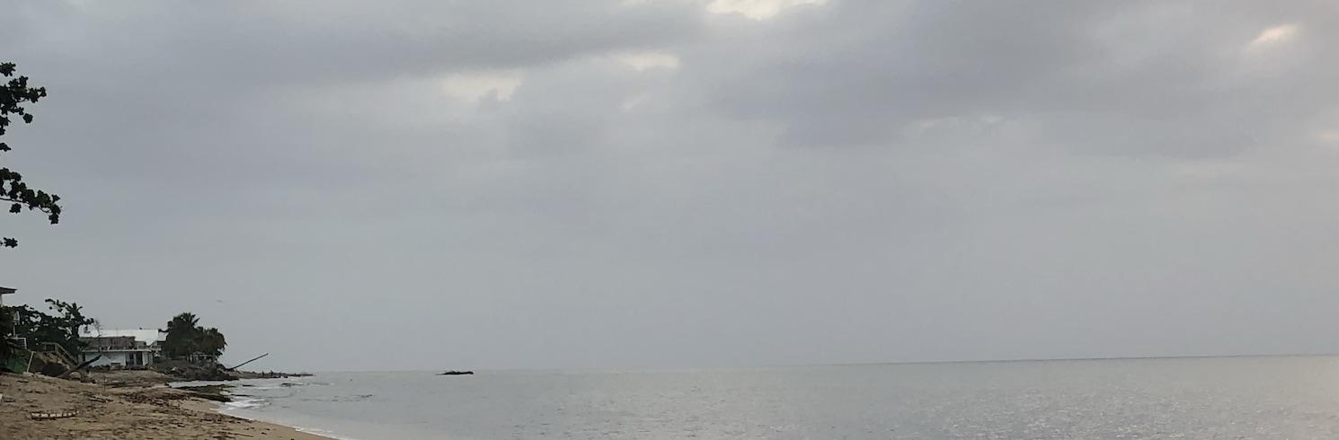 أجوادا, بورتوريكو