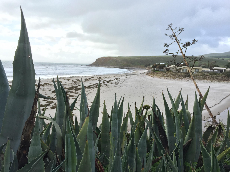Myponga Beach, South Australia, Australia