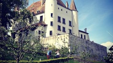 尼翁城堡/