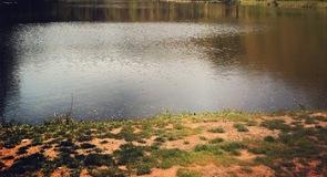 Parque de Deer Lakes