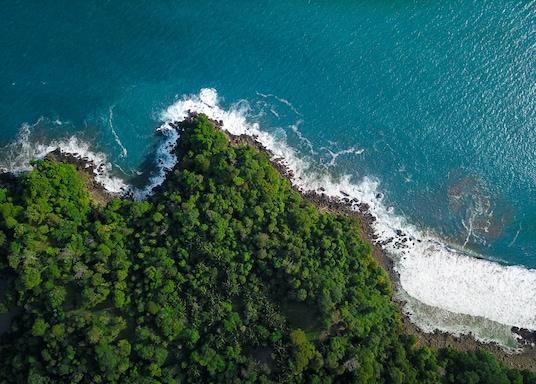 Ballena, Costa Rica