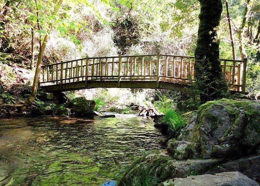 Anadia, Aveiro District, Portugal