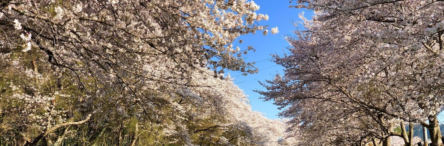 Ujitawara-cho, Japonya