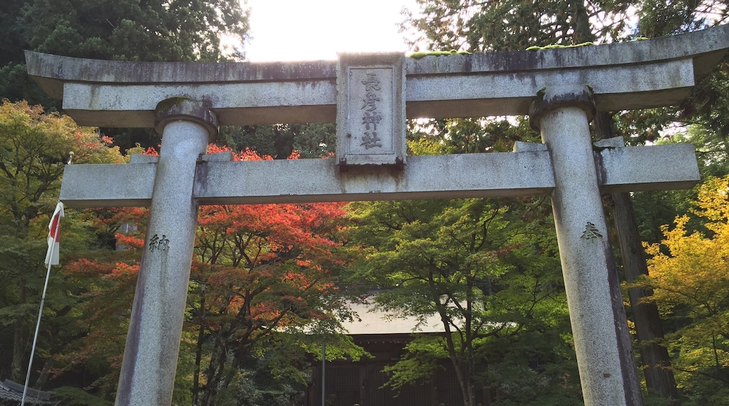 Photo by 地蔵さん