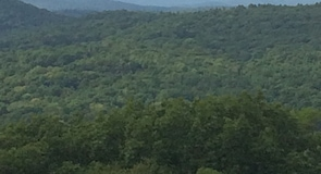 Mohawk Mountain State Forest
