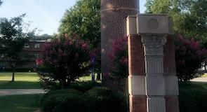 Albany Eyalet Üniversitesi