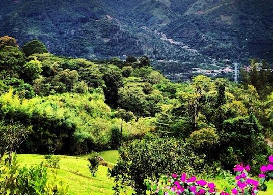 Orosi, Costa Rica