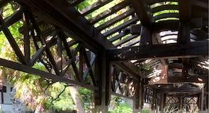 حديقة بستان الأسد