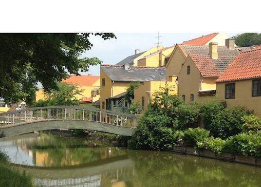 福雷德里克斯瓦克, 丹麥