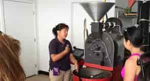 Plantacja kawy Kona Hula Daddy