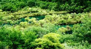 Národní park v údolí Ťiou-čaj