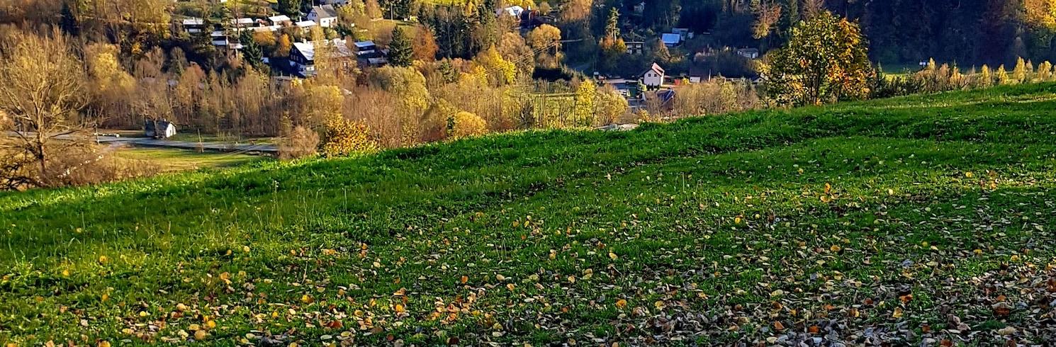 Kraj morawsko-śląski, Czechy