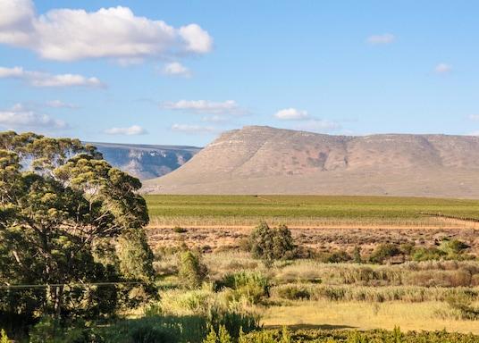 Мацикама, Южная Африка