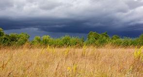 Sherburne Ulusal Doğal Hayatı Koruma Alanı