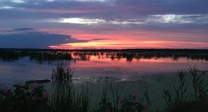 蒙特蘇馬國家野生動物保護區