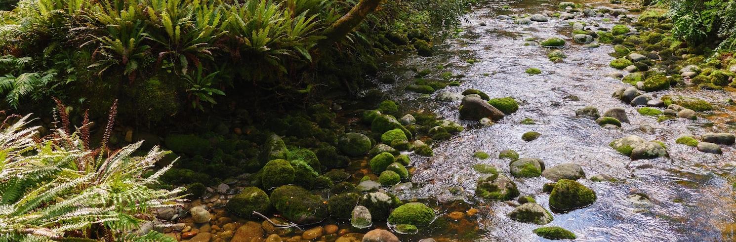 Buller District, New Zealand