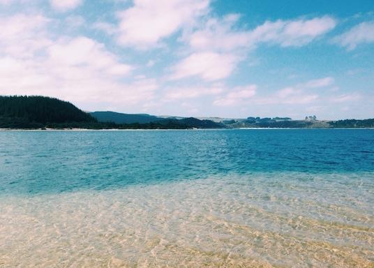 Omamari, New Zealand