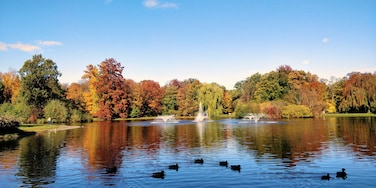 This park with a beautiful lake in center, surrounded with the trees looks even more beautiful in Autumn! 🍂 #fall #LifeAtExpediaGroup #autumn #wroclaw
