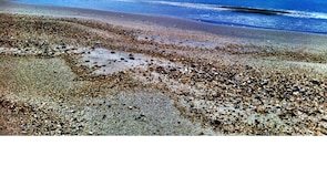 Plaža Bodrum