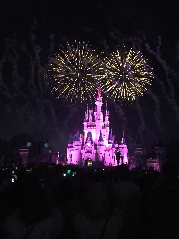 Walt Disney World®, Lake Buena Vista, Florida, Verenigde Staten