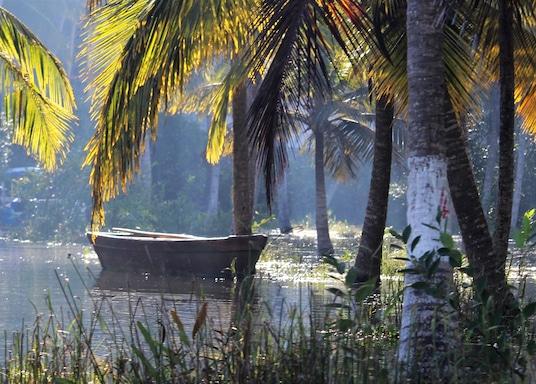 Neyyattinkara, India