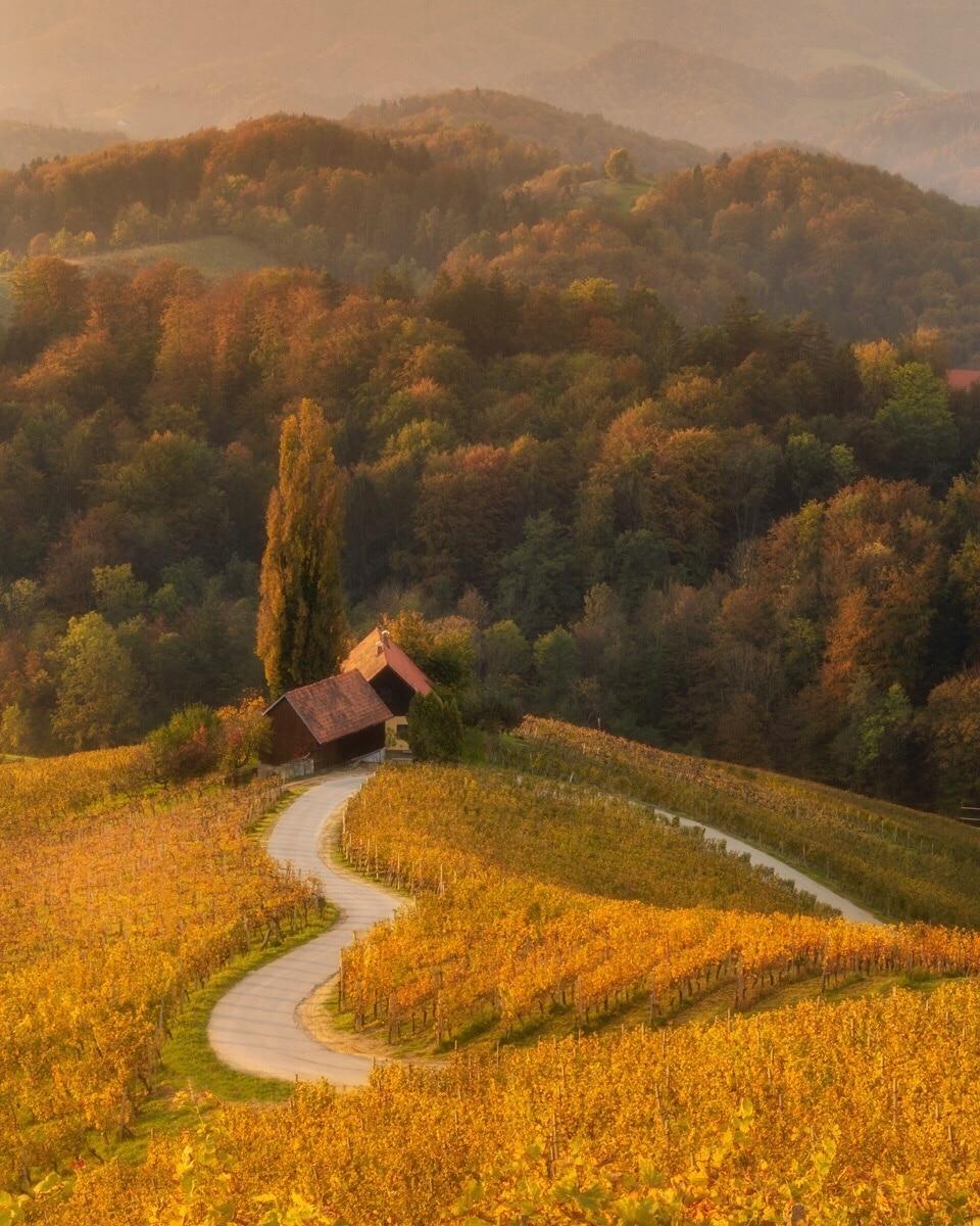 Südsteirische Weinstraße, Steiermark, Österreich