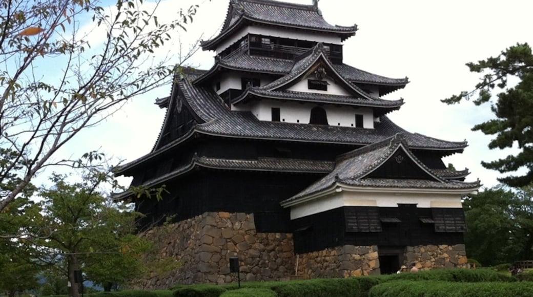 相片由 Tom Tomidokoro 提供